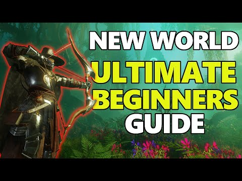 NEW WORLD MMO - ULTIMATE Beginners Guide - Everything You Need To Know