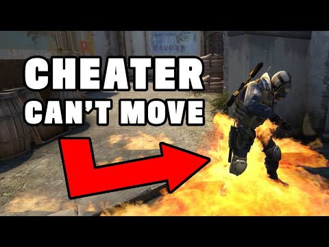 CSGO Cheaters trolled by fake cheat software
